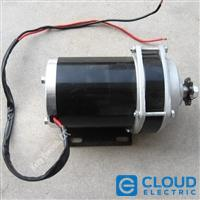Small Slow 36v 500w Electric Motor